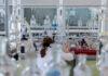 Akredytowane laboratorium mikrobiologiczne